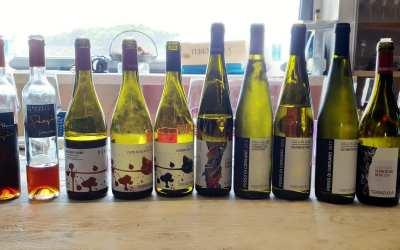 I vini di Terenzuola fanno da spartiacque tra Toscana e Liguria