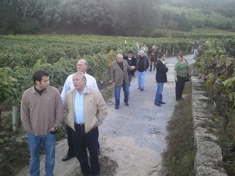 Importadores Americanos visitan la D.O. Ribeiro