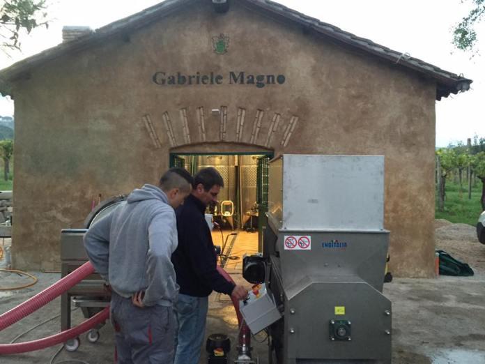 Gabriele Magno