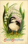 Easter Vintage Postcard – Little Bird