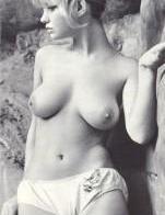 Donna Marlowe