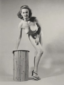 Pin-up Judy O'Day 11