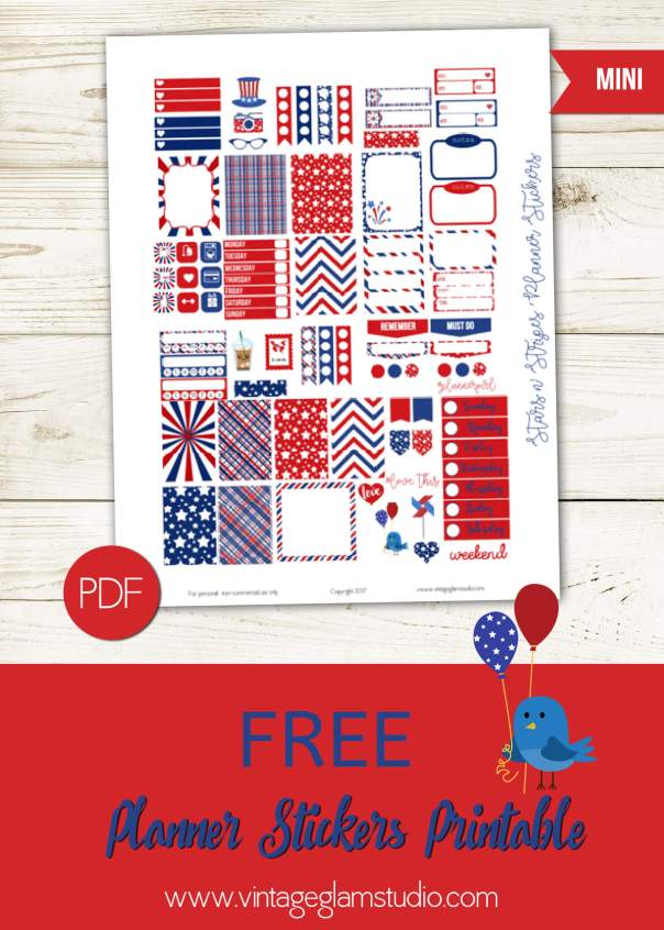 Stars N Stripes Planner Stickers | For the Mini Happy Planner