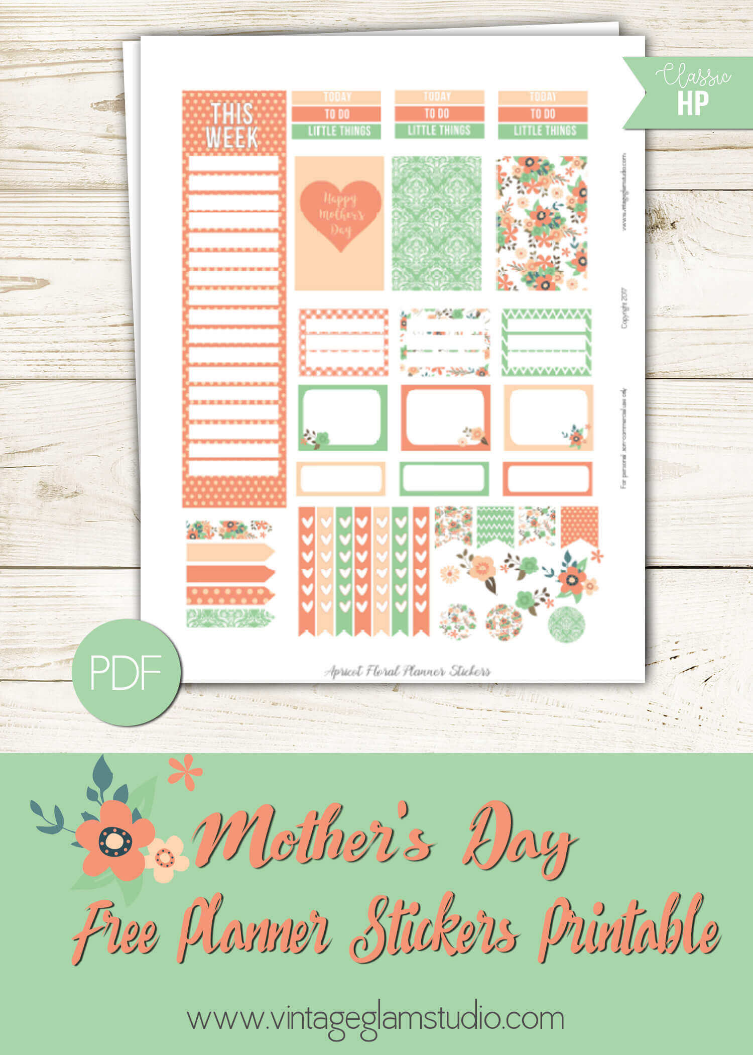 Apricot Floral Planner Stickers
