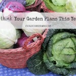 Rethink Your Garden Plans This Year!