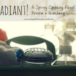 Spring Cleaning Ebook Review and Giveaway!