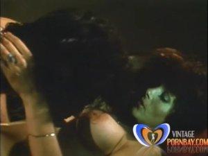 The Gloria Leonard Collection (1970s) (USA) – [Video-X-Pix] [Download]