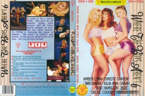 Where the Boys Aren't 6 (US) (1995) (High Quality) DVD5+AVI [Download]