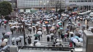 Shibuya scramble crossing ( photo by RachelH / CC BY-NC )