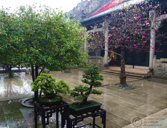 2016-07-20 Guangzhou, China