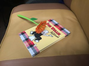 Oor Wullie VW Camper Journal