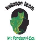 LEvitation Room - Mr. Polydactyl Cat