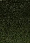 Condor Artificial Grass Arizona