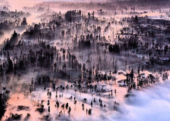 Neblina en Cemoro Lawang, Indonesia (Achmad Sumawijaya).