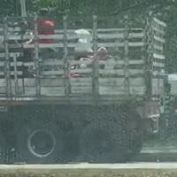 Un camión lleno de Venezolanos dejándolos en Yopal.