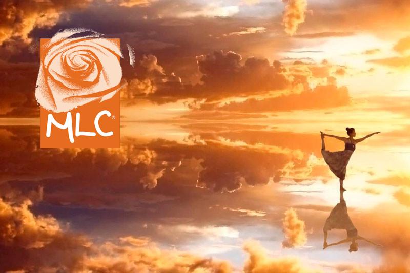 Jornada de puertas abiertas MLC