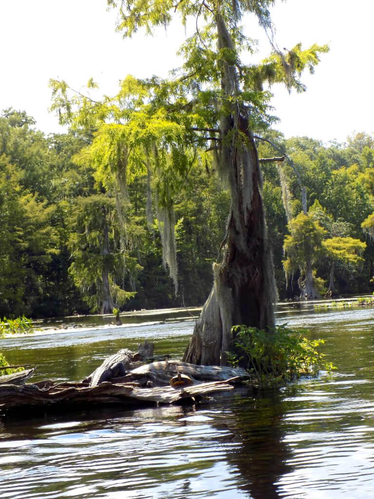 Wakulla Springs State Park, Florida