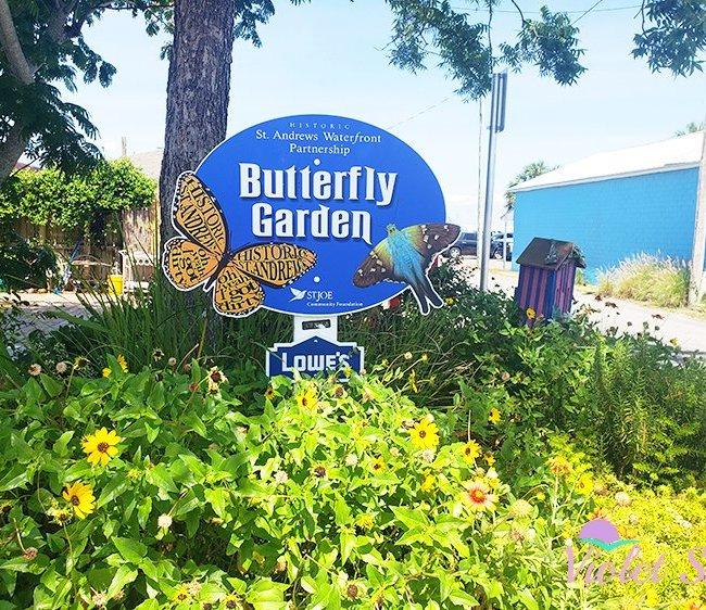 Butteryfly Garden, Historic St. Andrews, Florida
