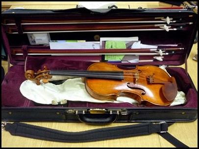 violino620