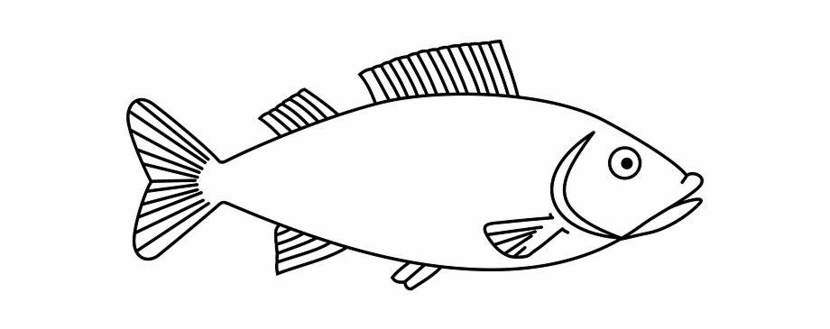 Fish Template To Embroider Http Milkfish Clipart Black And White Transparent Png Download 1351444 Vippng