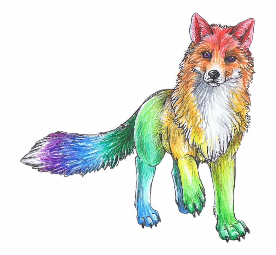 Rainbow Cute Animal Animals Sketch Art Drawing Cute Rainbow Animal Drawings Transparent Png Download 716283 Vippng