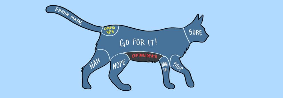 15幅完美圖解說明如何正確地寵愛你的寵物
