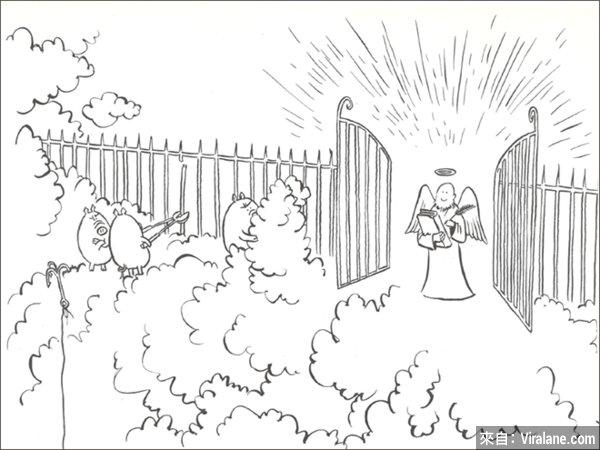 全世界最自私的豬!15幅讓你笑死又令你抓狂的混蛋豬漫畫