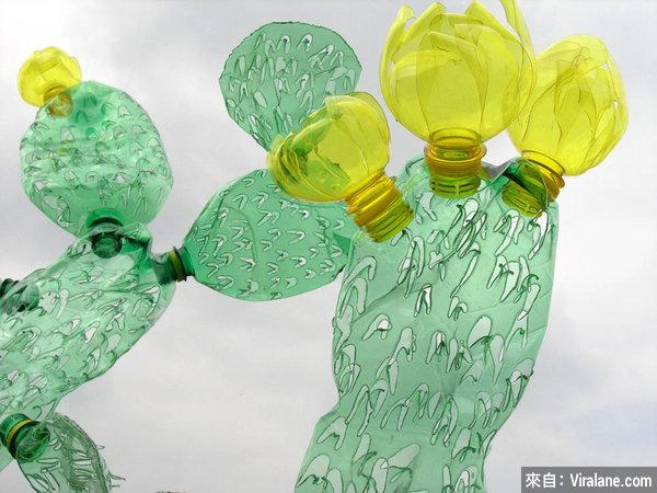 曾經是垃圾的塑料瓶,在她手上都變成了美麗的仙人掌和鮮花!