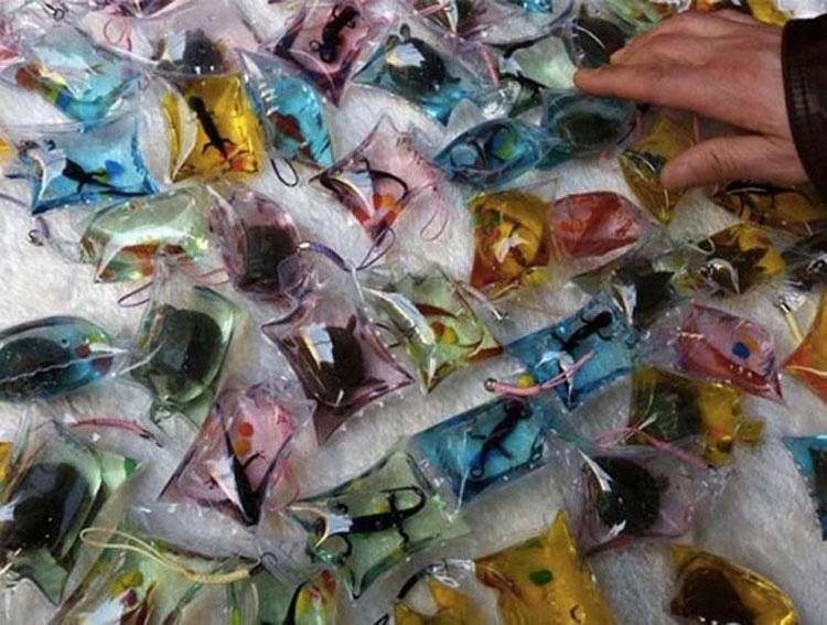 En China, la gente vende CRUELDAD ANIMAL en forma de un accesorio de moda