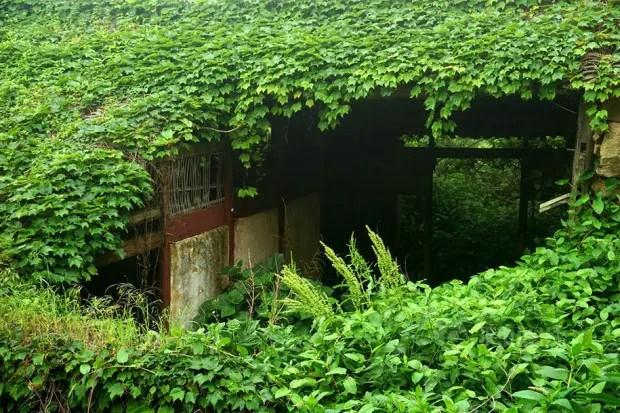 abandoned-fishing-village-goqui-island-shengsi-zhoushan-china-tang-yuhong-5