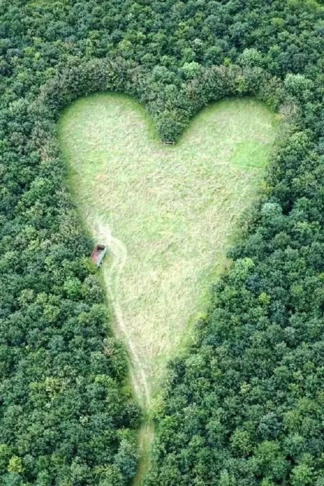 corazon enorme 3