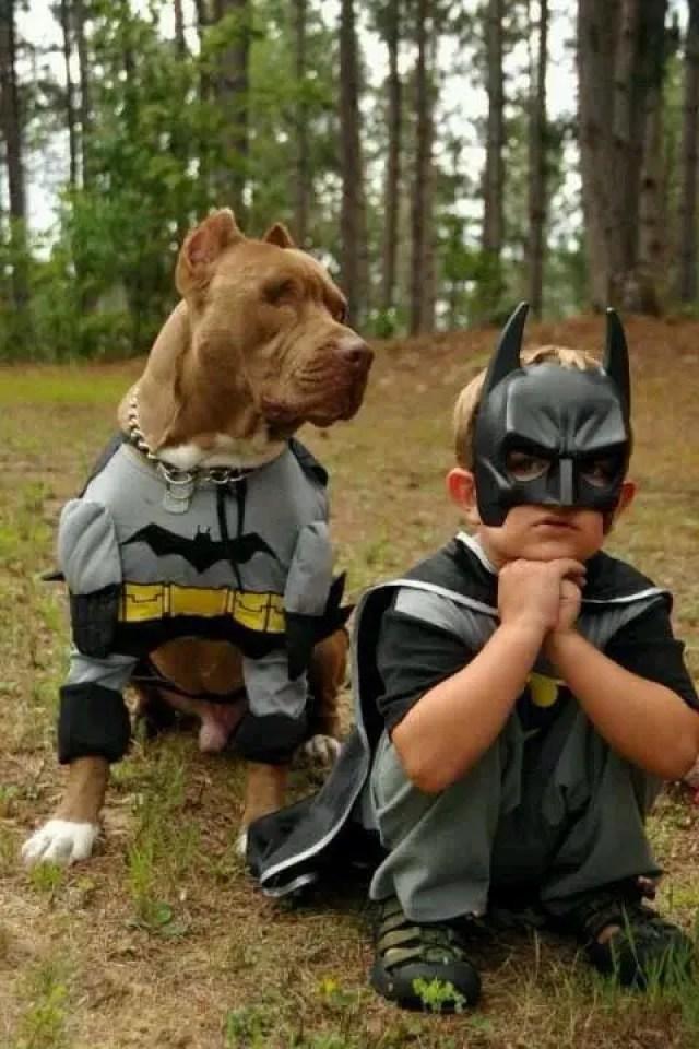 disfraces-halloween-ninos-mascotas13