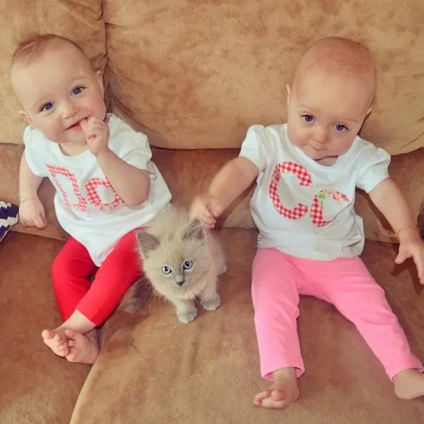 mother-twins-frequently-asked-question-sign-annie-nolan-127