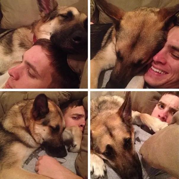 perros espacio personal 13