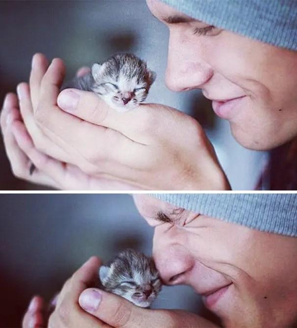 chicos bonitos con gatitos 1
