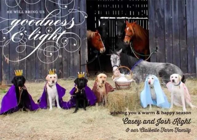 familia-perros-navidad5