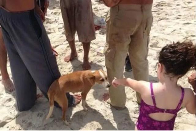 emigrante cubano y perro 4