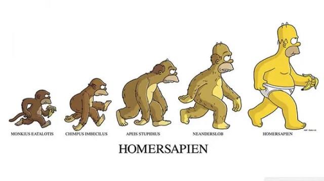 evolucion LOL 14