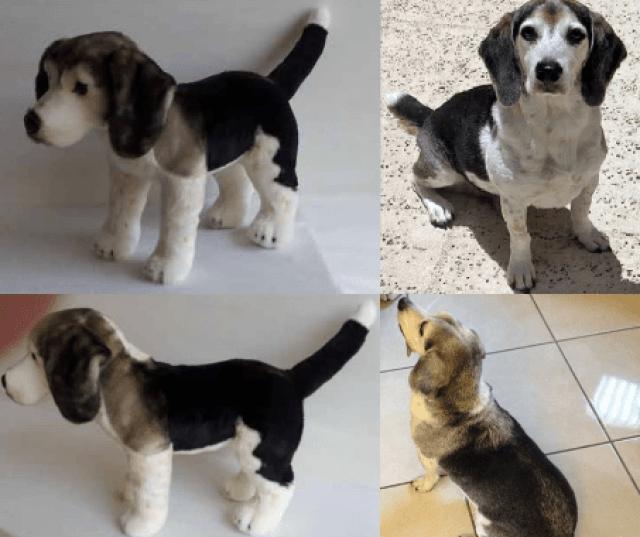 perritos-clonados-en-peluche-10