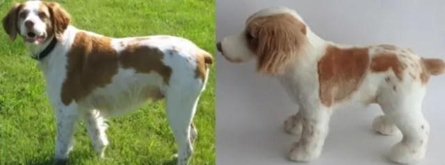 perritos-clonados-en-peluche-4
