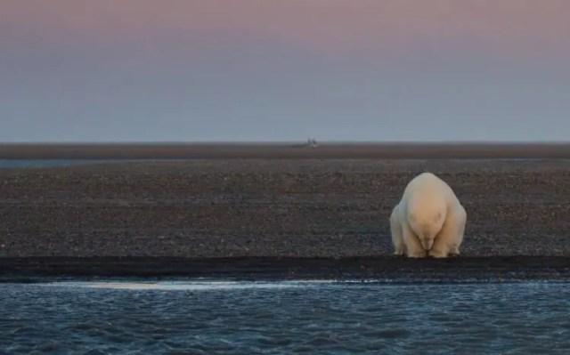 cambio-climatico-greenpeace-2
