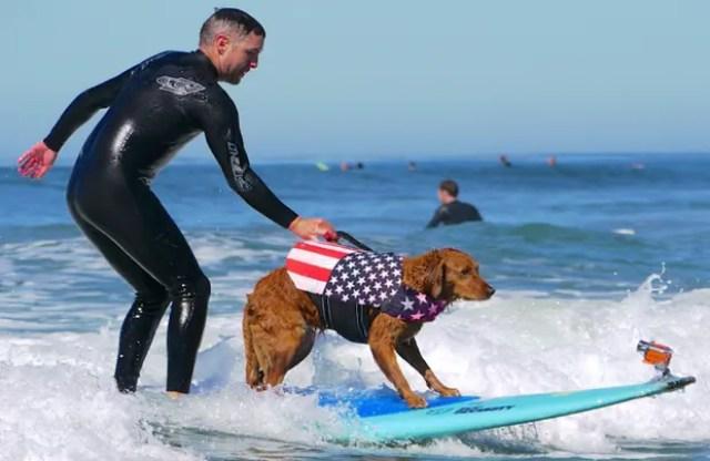 nino-autista-y-perro-surfista-8