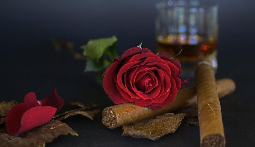 Herbal cigarettes