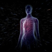 Interesting Facts about Human body that You may not aware of