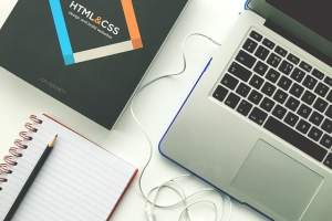 Web Design Business in USA