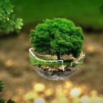 How EcoFreek Is Saving The Earth
