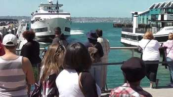 Whale Watching Boat Crashes Into San Diego Dock