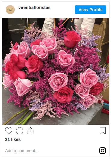 Sigue a virentiafloristas en Instagram