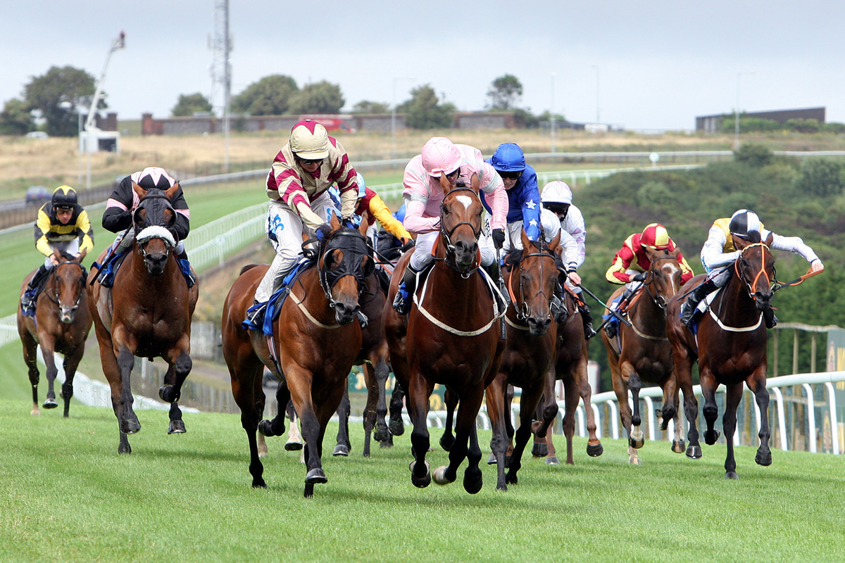Image result for horse racing UK