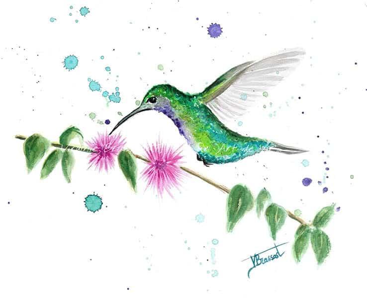 Peinture à l'aquarelle d'un colibri vert et violet volant au-dessus d'une branche de feuilles vertes et de fleurs roses en pompons, projections d'aquarelle, réalisé par l'artiste peintre Virginie Brassart
